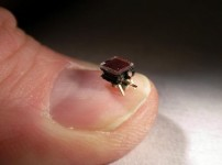 News: Micro robot swarm video working together
